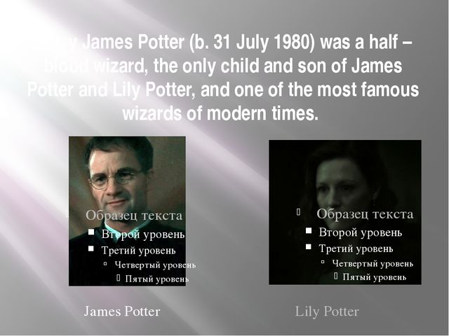 Harry James Potter (b. 31 July 1980) was a half – blood wizard, the only chil...