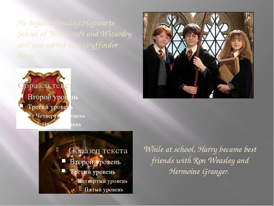While at school, Harry became best friends with Ron Weasley and Hermoine Gra...