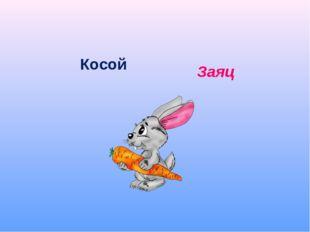 Косой Заяц