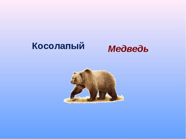 Косолапый Медведь
