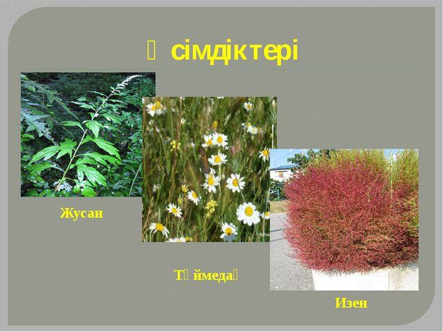 Өсімдіктері Жусан Түймедақ Изен
