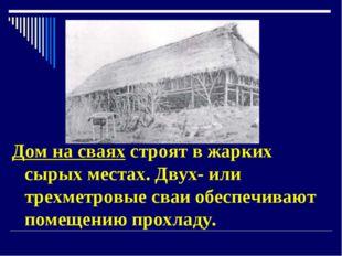 Дом на сваях строят в жарких сырых местах. Двух- или трехметровые сваи обеспе
