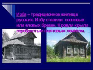 Изба – традиционное жилище русских. Избу ставили сосновых или еловых бревен.
