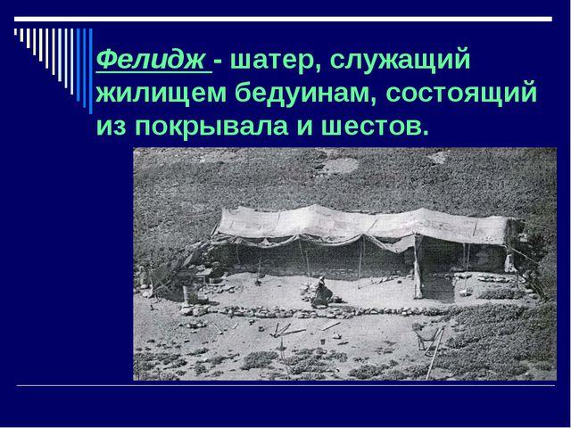 Фелидж - шатер, служащий жилищем бедуинам, состоящий из покрывала и шестов.