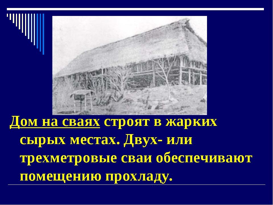 Дом на сваях строят в жарких сырых местах. Двух- или трехметровые сваи обеспе...