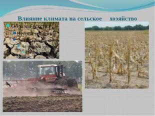 Влияние климата на сельское хозяйство