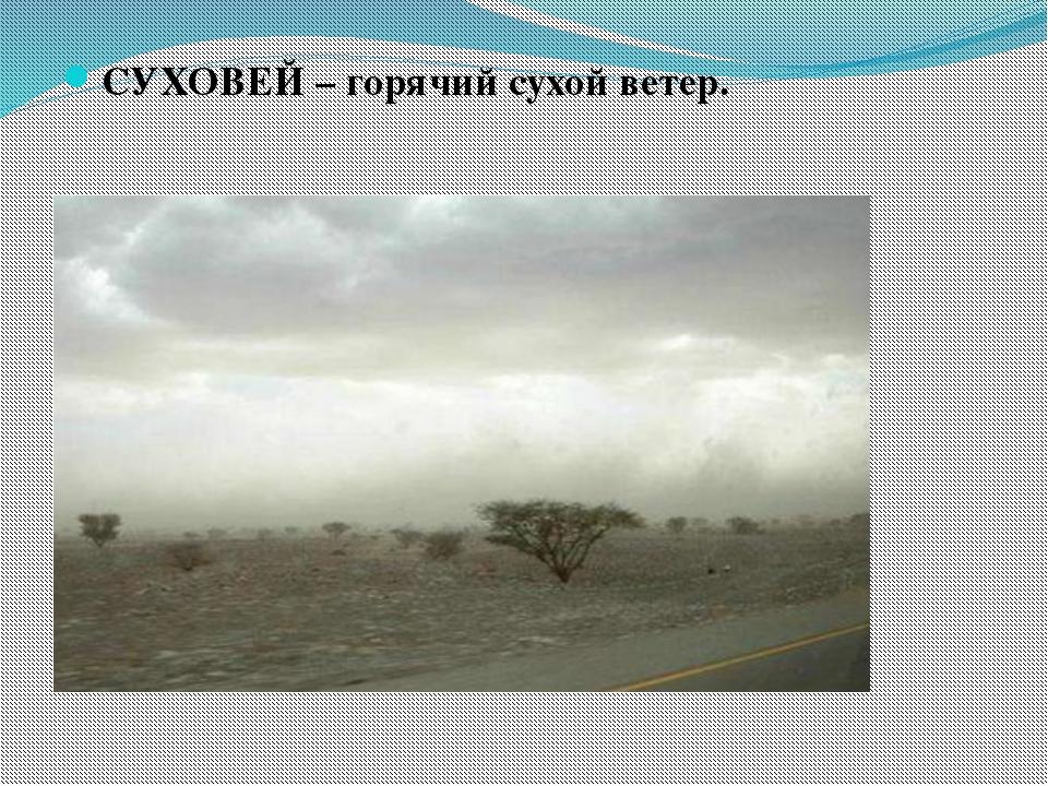 СУХОВЕЙ – горячий сухой ветер.