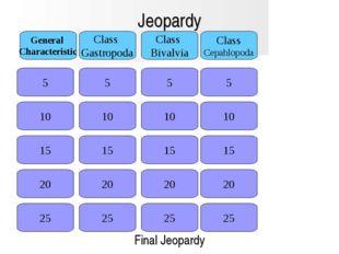 Jeopardy 5 General Characteristic Class Gastropoda Class Bivalvia Class Cepah