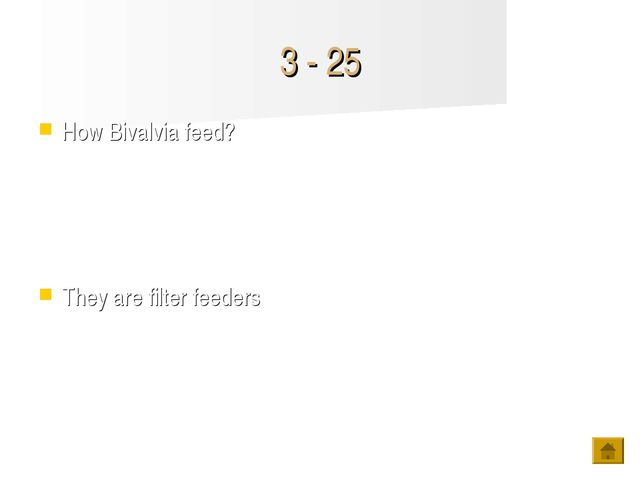 3 - 25 How Bivalvia feed? They are filter feeders