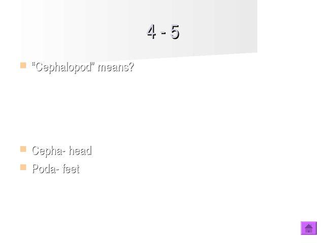 """4 - 5 """"Cephalopod"""" means? Cepha- head Poda- feet"""