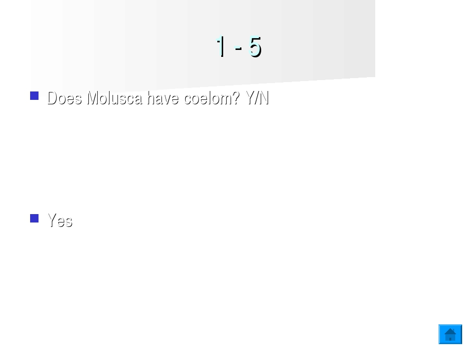 1 - 5 Does Molusca have coelom? Y/N Yes