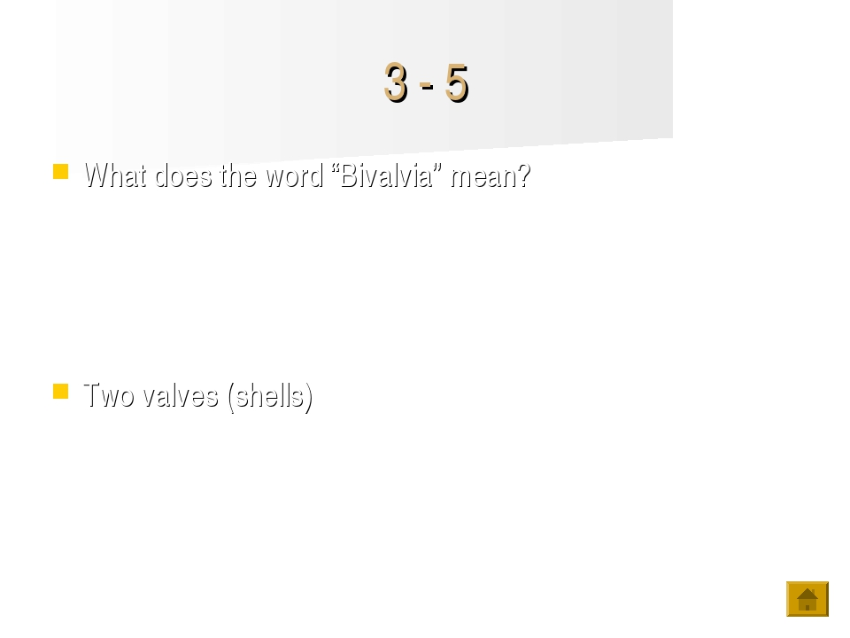 """3 - 5 What does the word """"Bivalvia"""" mean? Two valves (shells)"""