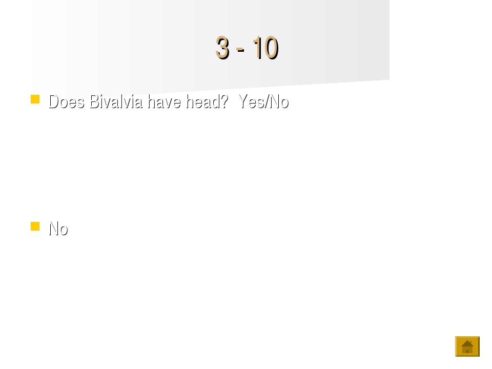 3 - 10 Does Bivalvia have head? Yes/No No