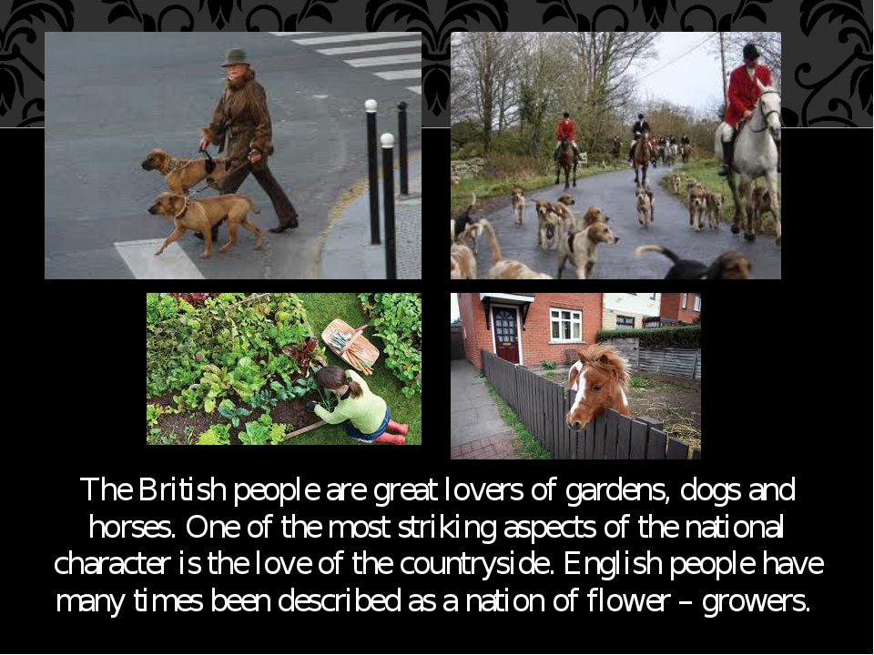 The British people are great lovers of gardens, dogs and horses. One of the m...