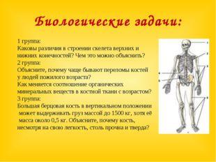 Биологические задачи: 1 группа: Каковы различия в строении скелета верхних и
