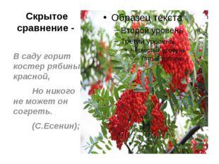 Скрытое сравнение - В саду горит костер рябины красной, Но никого не может он