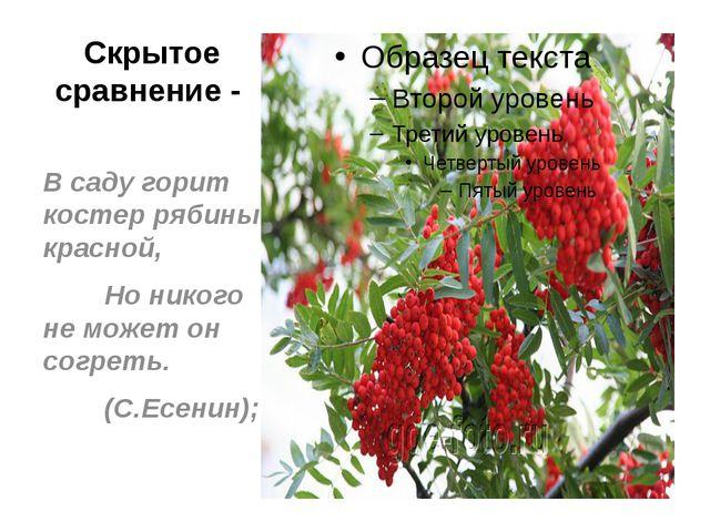 Скрытое сравнение - В саду горит костер рябины красной, Но никого не может он...