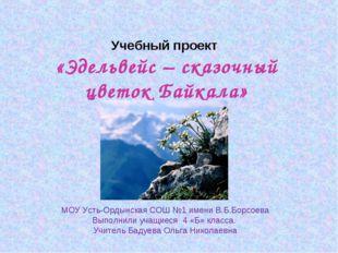 Учебный проект «Эдельвейс – сказочный цветок Байкала» МОУ Усть-Ордынская СОШ