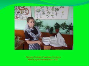 Аралова Татьяна учащаяся 11 класса МКОУ Краснолипьевская СОШ