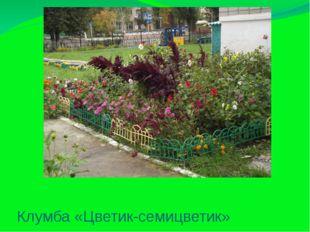 Клумба «Цветик-семицветик»