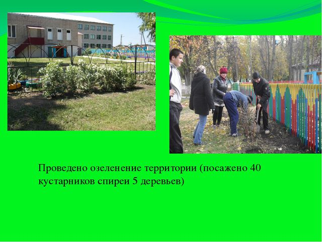 Проведено озеленение территории (посажено 40 кустарников спиреи 5 деревьев)