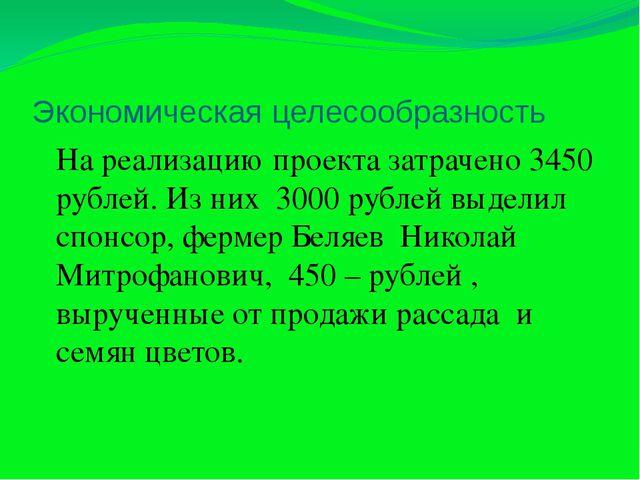 Экономическая целесообразность На реализацию проекта затрачено 3450 рублей. И...