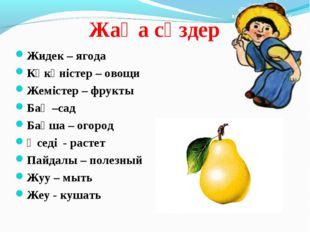 Жаңа сөздер Жидек – ягода Көкөністер – овощи Жемістер – фрукты Бақ –сад Бақша