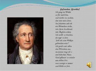 Gefunden (Goethe) Ich ging im Walde so für mich hin, und nichts zu suchen, da