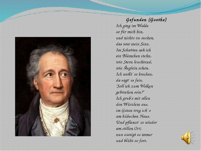 Gefunden (Goethe) Ich ging im Walde so für mich hin, und nichts zu suchen, da...