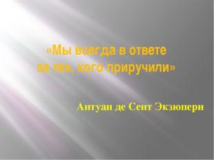 «Мы всегда в ответе за тех, кого приручили» Антуан де Сент Экзюпери