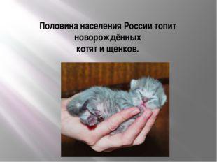 Половина населения России топит новорождённых котят и щенков.
