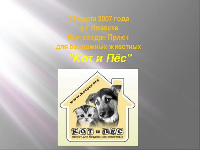 """12 марта 2007 года в г.Ижевске был создан Приют для бездомных животных """"Кот и..."""