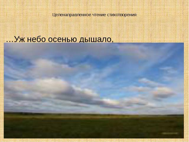Целенаправленное чтение стихотворения …Уж небо осенью дышало,