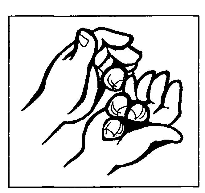 орехи1