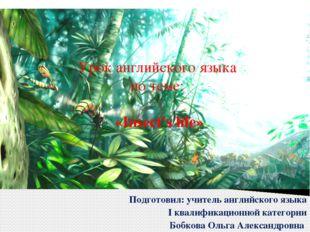 Урок английского языка по теме: «Insect's life» Подготовил: учитель английско