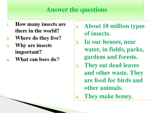 How many insects are there in the world? Where do they live? Why are insects...