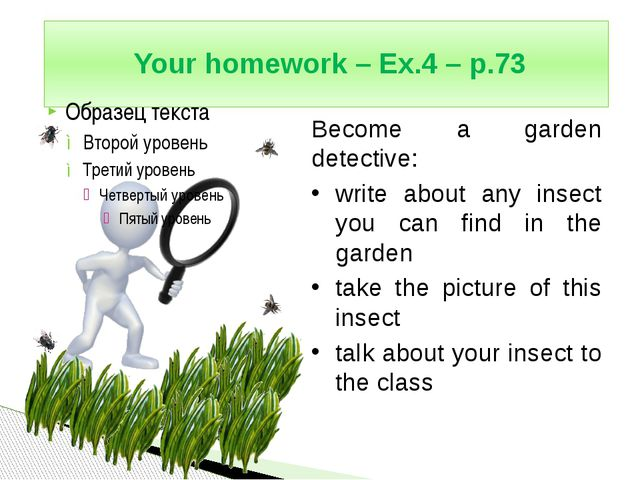 Your homework – Ex.4 – p.73 Become a garden detective: write about any insec...