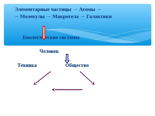 Элементарные частицы → Атомы → → Молекулы → Макротела → Галактики Биологичес...