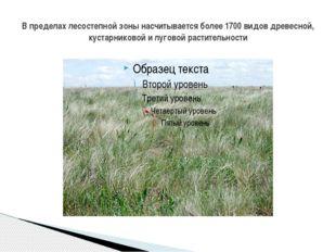В пределах лесостепной зоны насчитывается более 1700 видов древесной, кустарн