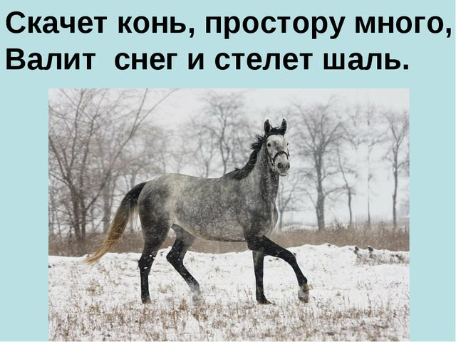 Скачет конь, простору много, Валит снег и стелет шаль.