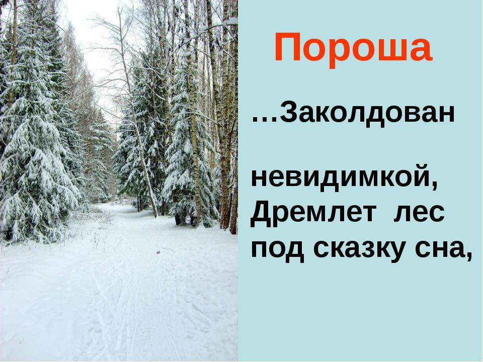 Пороша …Заколдован невидимкой, Дремлет лес под сказку сна,