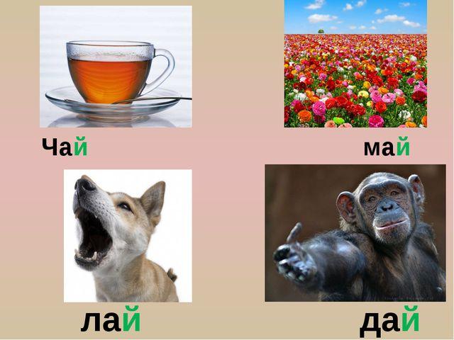 Чай май лай дай