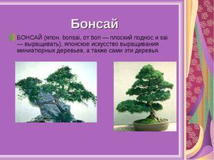 Бонсай БОНСАЙ (япон. bonsai, от bon — плоский поднос и sai — выращивать), япо