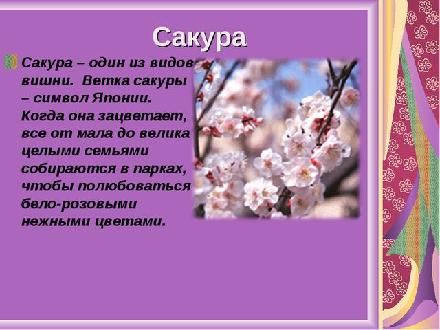 Сакура Сакура – один из видов вишни. Ветка сакуры – символ Японии. Когда она...