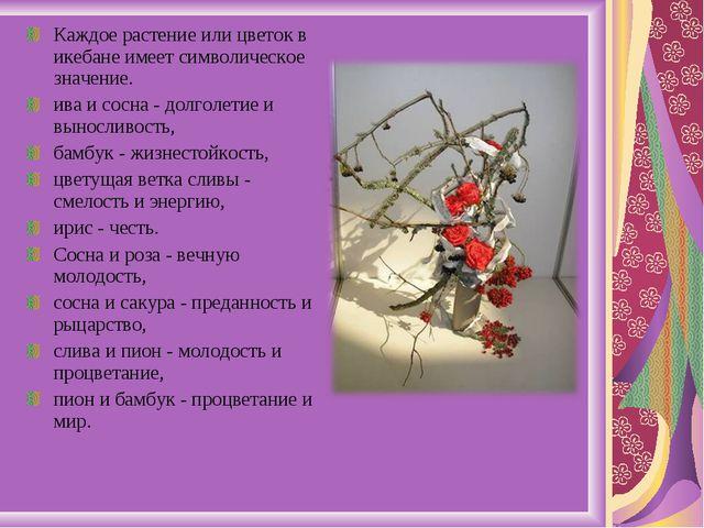 Каждое растение или цветок в икебане имеет символическое значение. ива и сосн...
