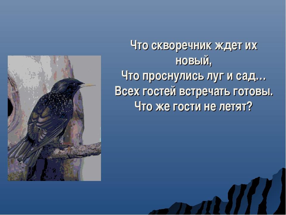 Что скворечник ждет их новый, Что проснулись луг и сад… Всех гостей встречать...
