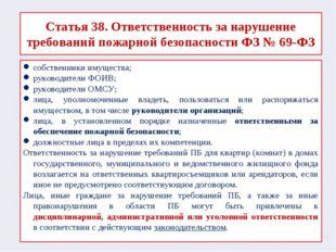 Статья 38. Ответственность за нарушение требований пожарной безопасности ФЗ №