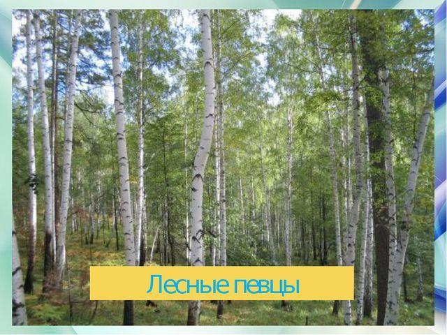 Лесные певцы