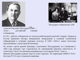 Шехурдин и Мамонтова 1930 год Алексей Павлович Шехурдин (1886— 1951)— росс