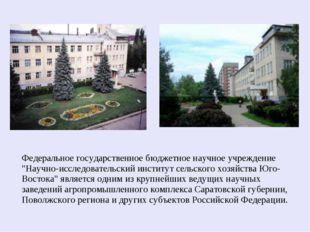 """Федеральное государственное бюджетное научное учреждение """"Научно-исследовател"""